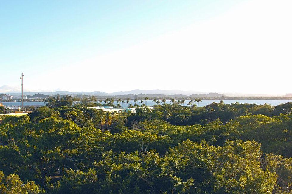 tobias-sikstron-puerto-rico-street-view.jpg