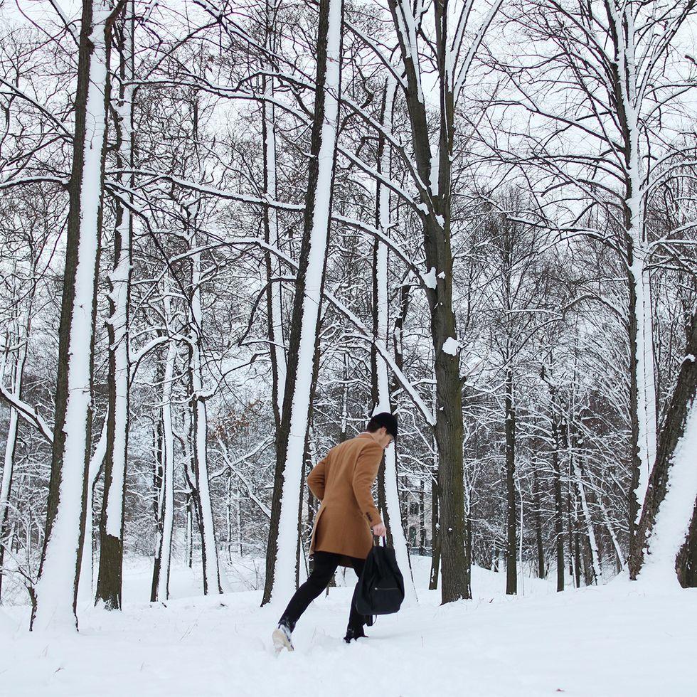 woods tobias.jpg